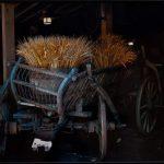"""Wheat Thins,"" (professional) Chester Bernat, Wichita Presbyterian Manor"