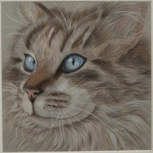 Drawing - Blue Eyed Cat - Drawing of cat face with long hair and blue eyes