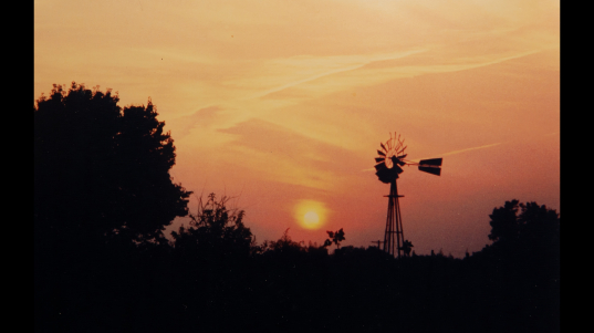 Photography - Sunset - photograph of golden yellow sunset looking through the trees and past a windmill in the distance.