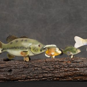 Sculpture 3D - Nature - sculpture of seven fish of different varities and sizes mounted on a handcrafted log.