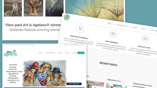 AiA Website Wins Award (2)